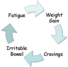 Fatigue-cycle